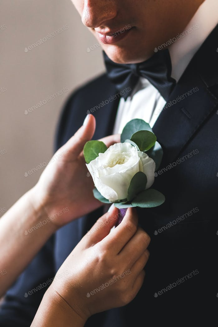 Preparations for the wedding, the bride helps the groom to wear boutonniere