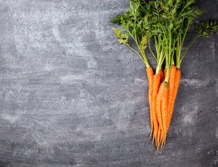 Bunch of fresh Colorful carrots with green leaves