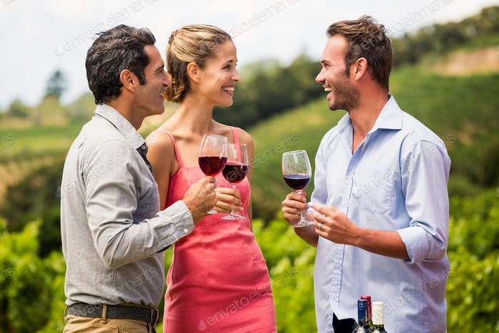 Friends enjoying red wine