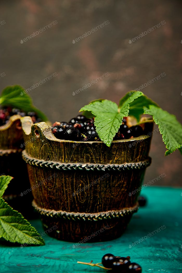 Blackcurrant berries with leaves, black currant