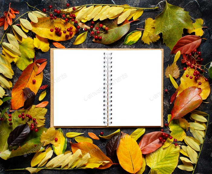 Autumn  leaves and notebook on a dark background