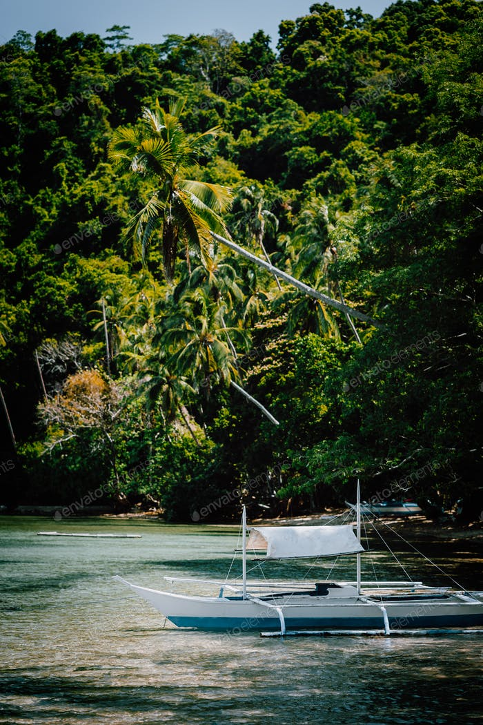 Palawan El Nido Marine Reserve Park famous nature spot blessed ecosystem rainforest surrounds