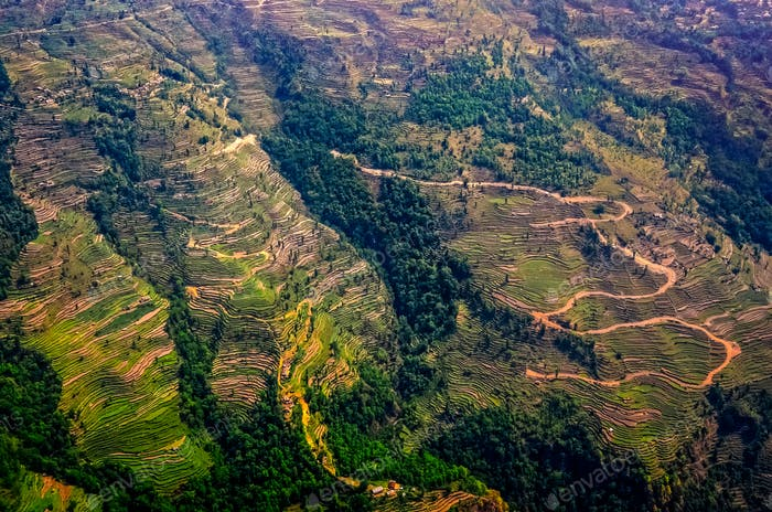Aerial view of green and colorful rice fields and terraces