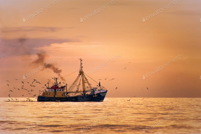 Fisherman boat on the sea with birds behind during sunset