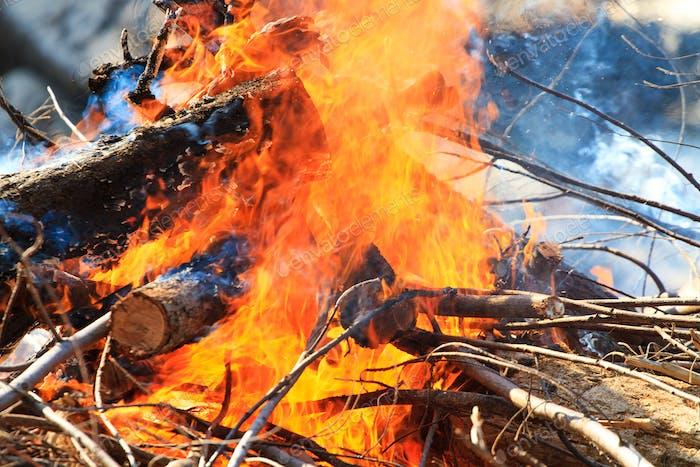 Lagerfeuer brennt am Strand