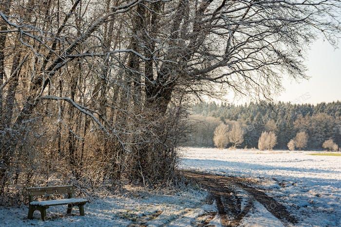 Закат в холодном белом зимнем пейзаже. Дорога через сельскую местность матовые поля. Скамейка в лесу