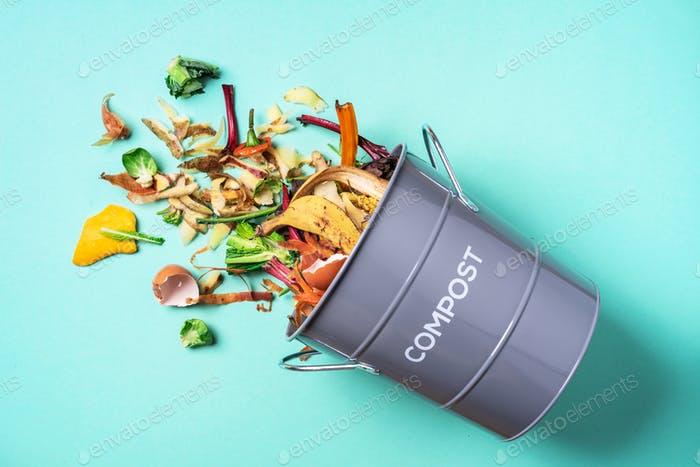 Trash bin for composting with leftover from kitchen on blue background. Top view. Recycling scarps