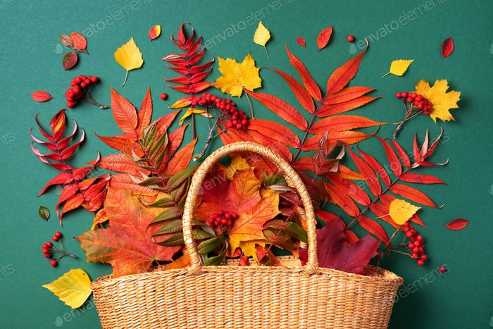 Autumn composition. Straw bag with autumn dried leaves on green background. Flat lay. Top view. Copy