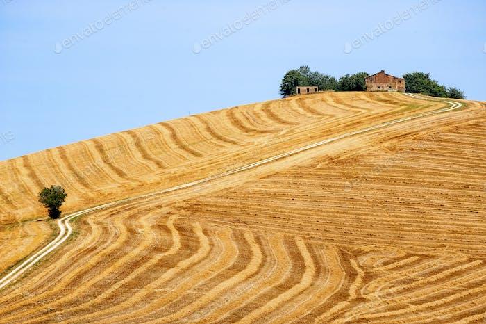 Landlandschaft in Marken (Italien)