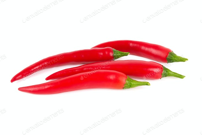 chili pepper