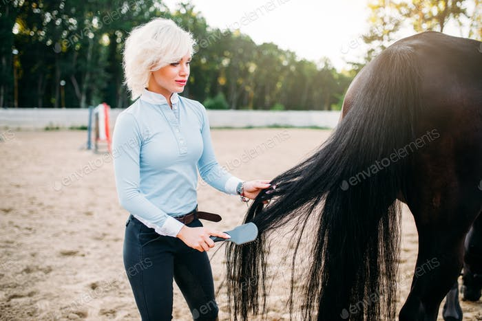 Young woman combing the tail of the horse