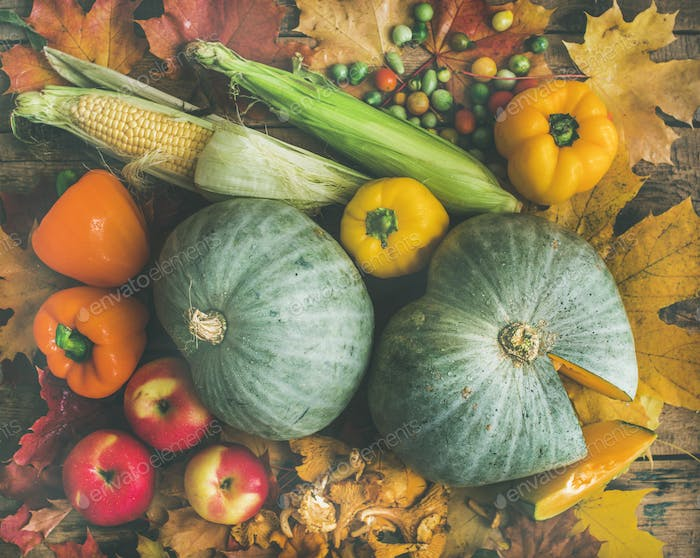 Fall vegetables assortment over wooden table background, top view