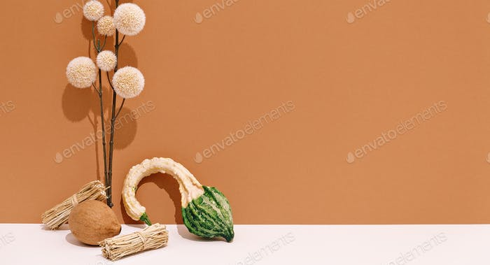Autumn set.  Fall  minimal concept. Still life  brown beige colours trend