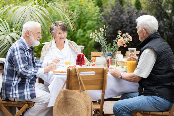 Elderly friends at the table,having fun during summer garden party