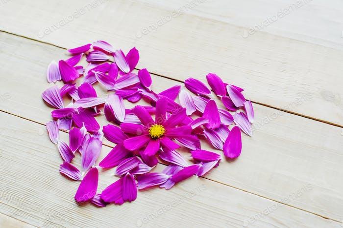 Blume Herzform lag auf Holzhintergrund