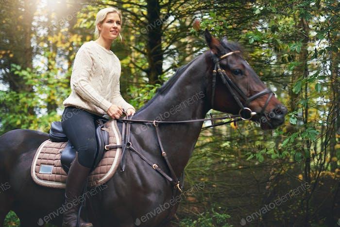 Леди езда а коричневый лошадь в парке