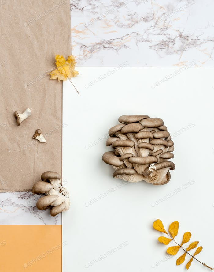 Oyster mushrooms on a combed background of kraft paper, marble a