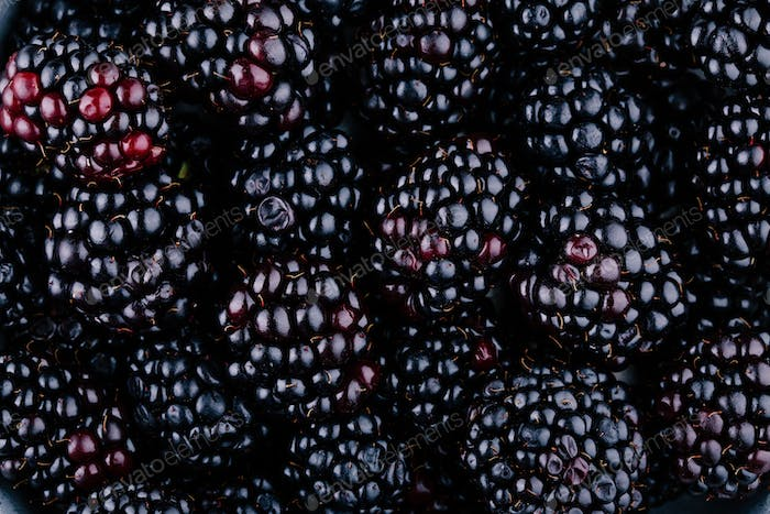fresh ripe organic blackberries