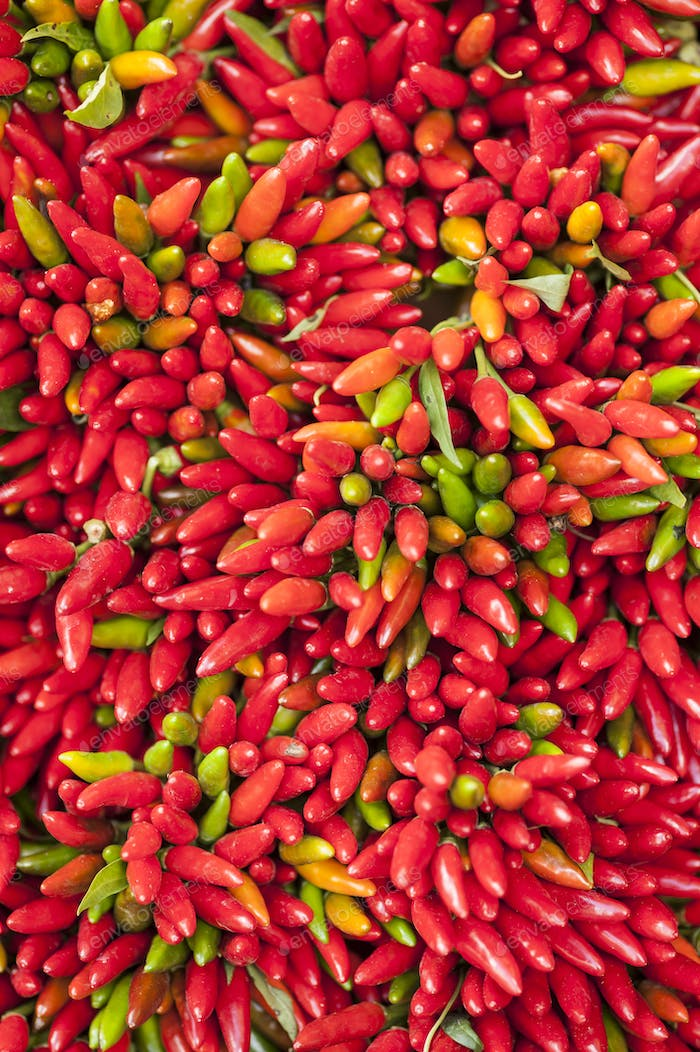red hot pepper bunch