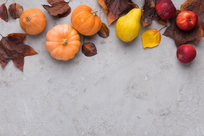 Bright autumn harvest with fallen leaves on gray background