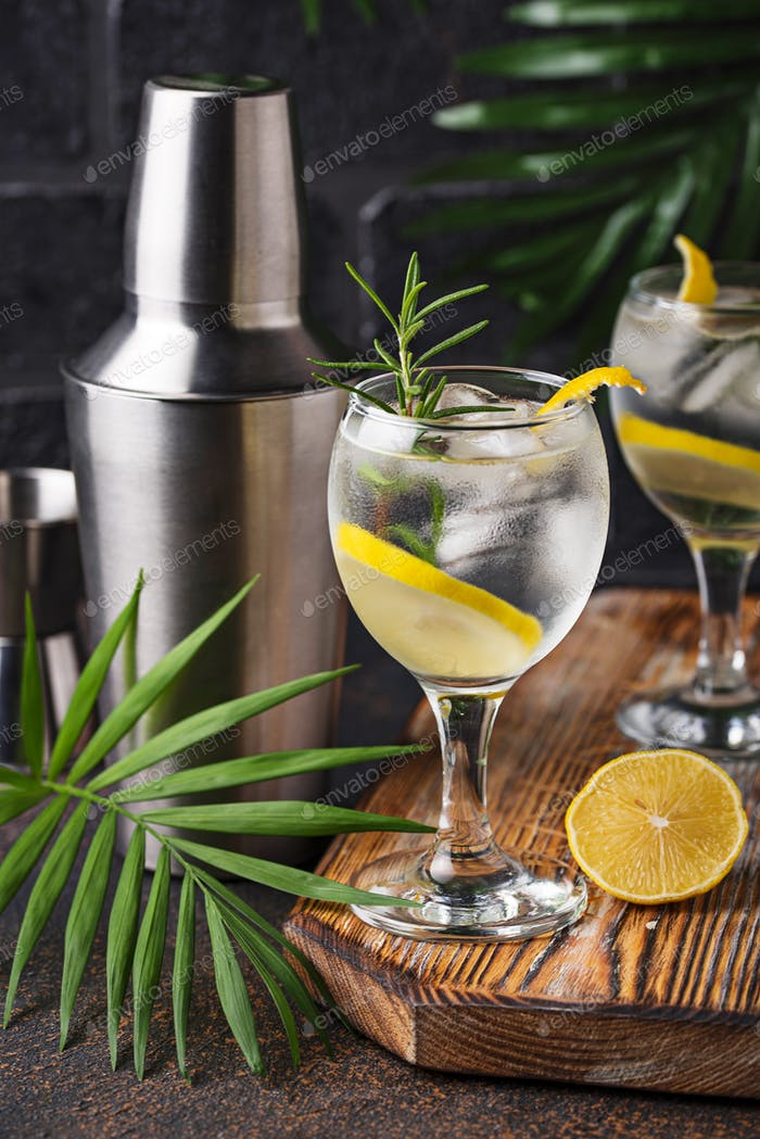 Gin tonic cocktail with lemon