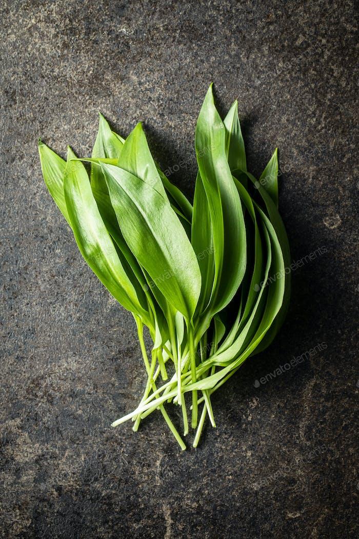 Green wild garlic leaves.