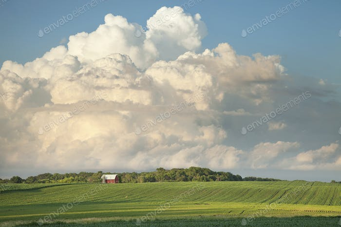 Red Barn and Soybean Fields Below Dramatic Cloudscape