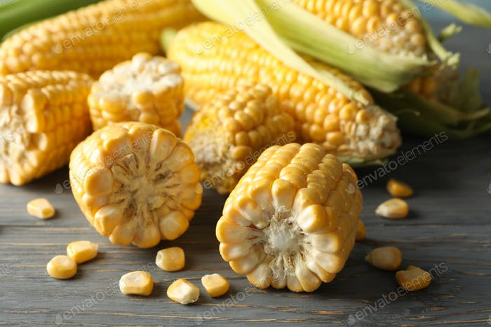 Composition with fresh raw corn on gray wooden table