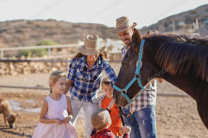 Family, parents and children enjoy day at horse ranch - Focus on the horse