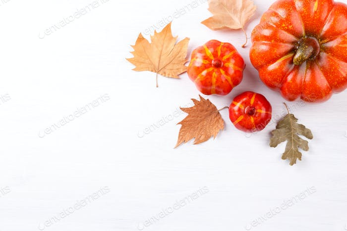 Autumn or Thanksgiving background