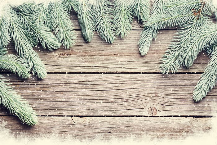 Christmas wooden background with fir tree