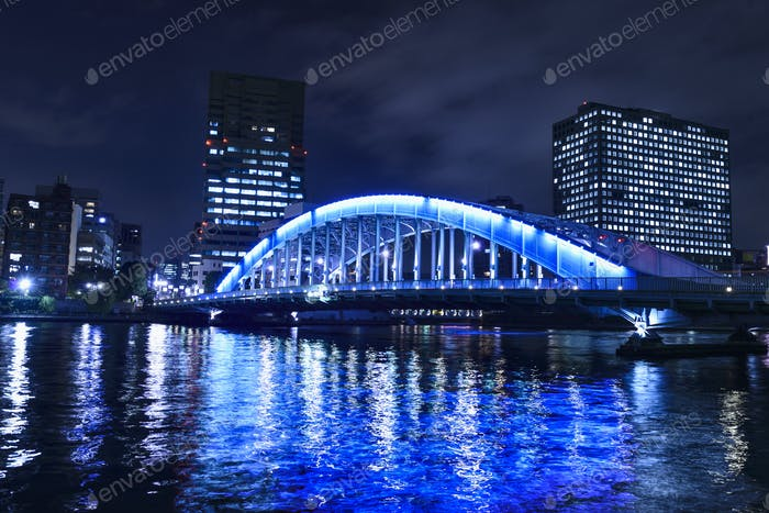54922,Silhouette of Tokyo skyline lit up at night, Tokyo, Japan