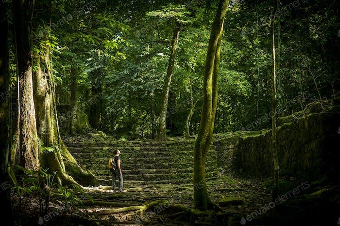 Adventure Travel In Jungle