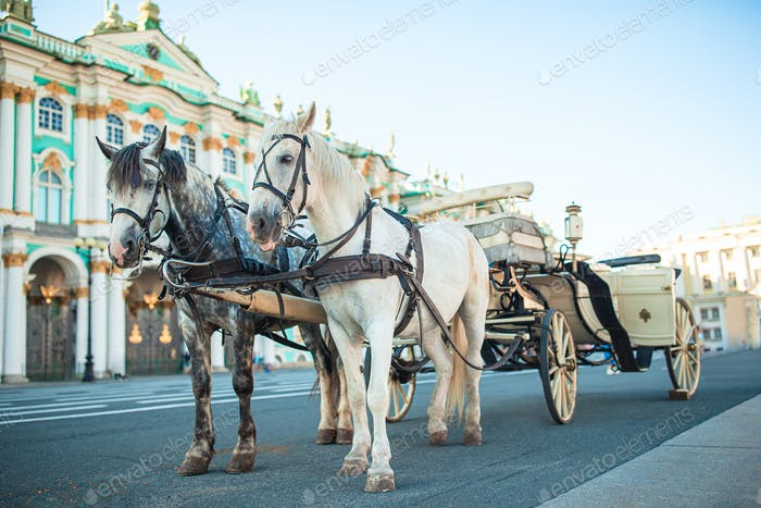 The Palace Square in St Petersburg inRussia