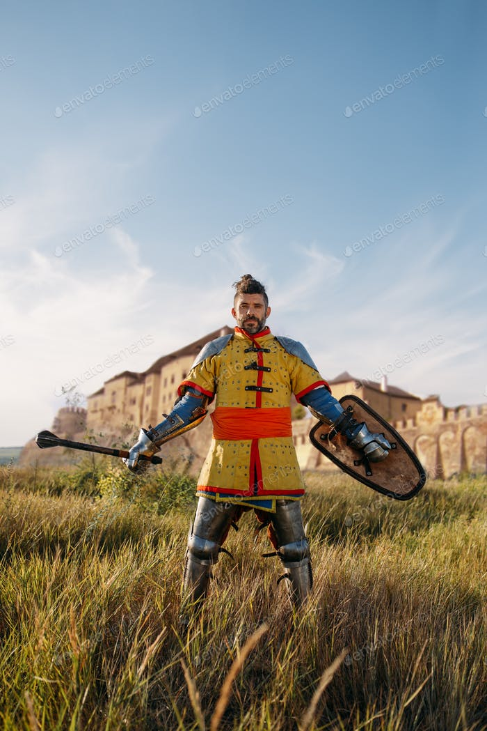 Medieval knight poses in armor opposite the castle