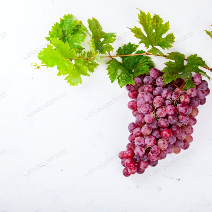 Grape cluster is a pink variety.