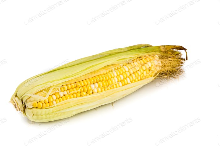 Sweet and natural crystal corn variety with white background.