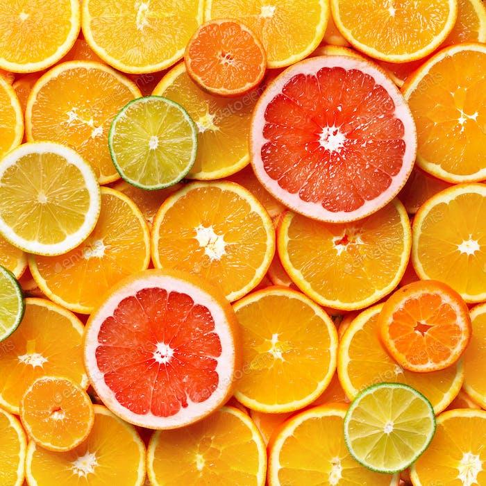 Isolierte Zitrusfrüchte. Stücke von Zitrone, Limette, rosa Grapefruit und Orange isoliert auf weiß