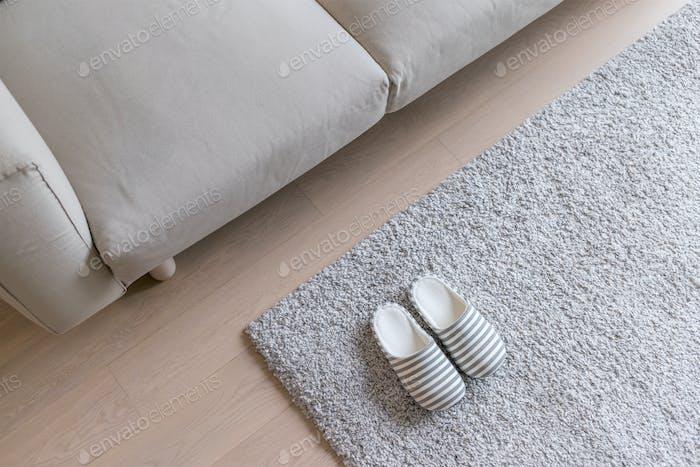 Slipper on Grey carpet on floor at home