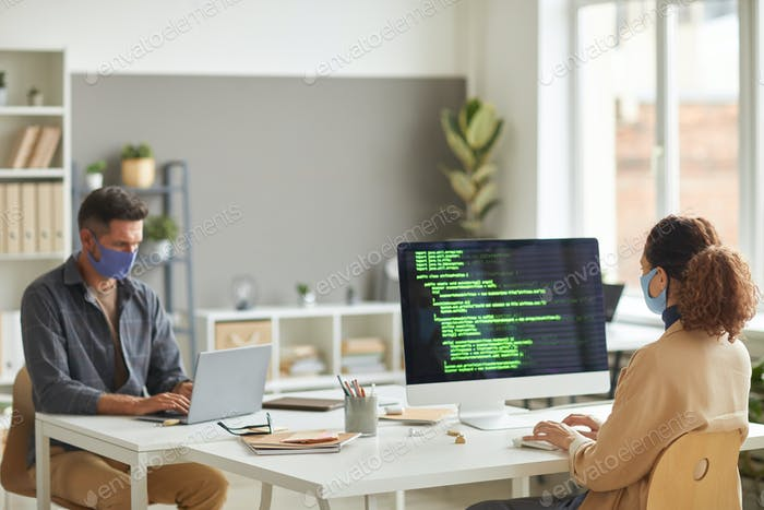 Programmers programming soft