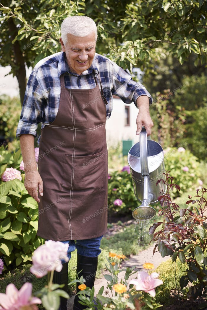 Old man watering flowers in his garden