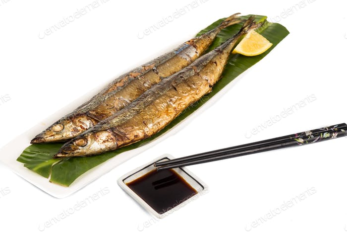 Grilled Japanese Sanma Fish