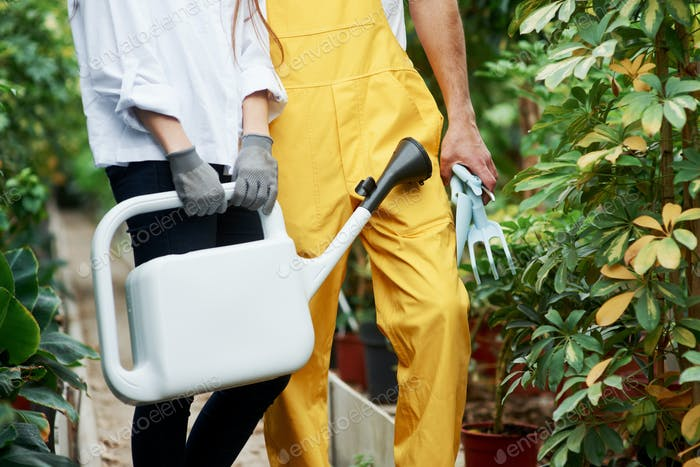 Particle photo of two garden workers in job clothes standing between plants and hold special tools