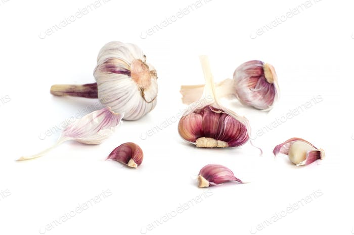 Young cracked garlic on a clean white background.