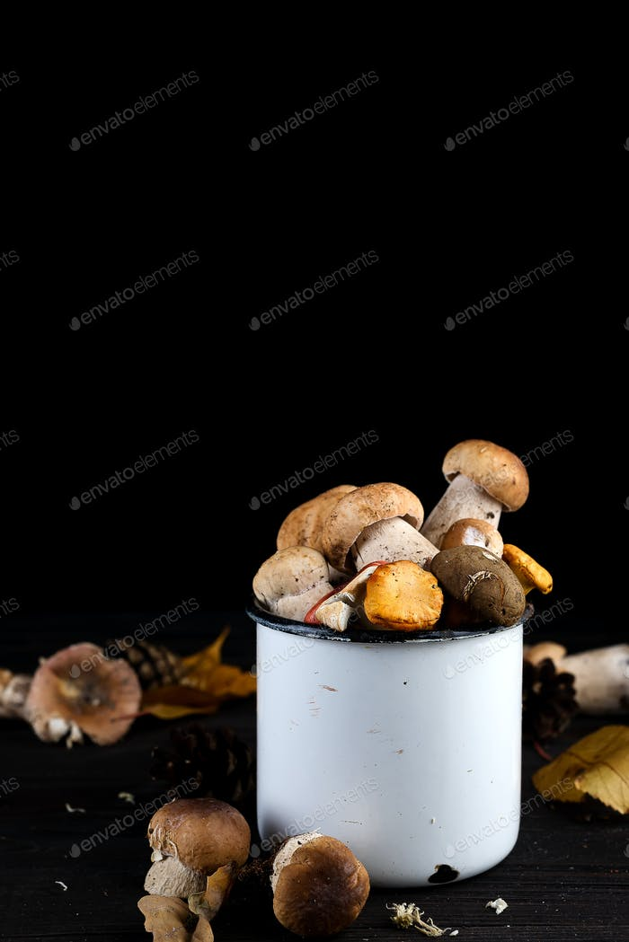Fresh porcini mushrooms in metal cup on rustic wooden backgroun