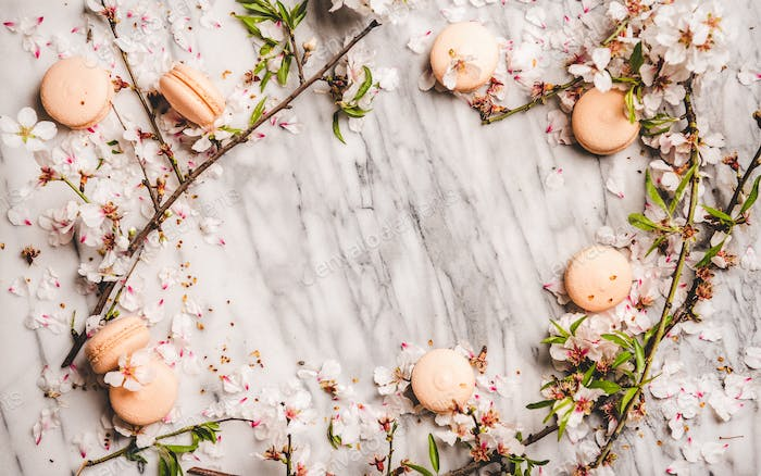 Sweet macaron cookies and white spring blossom flowers, horizontal composition