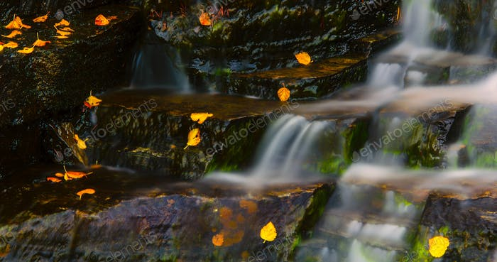 Autumn leaves on a waterfall