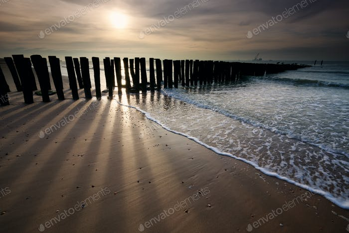 sunshine over old wooden breakwater on North sea coast