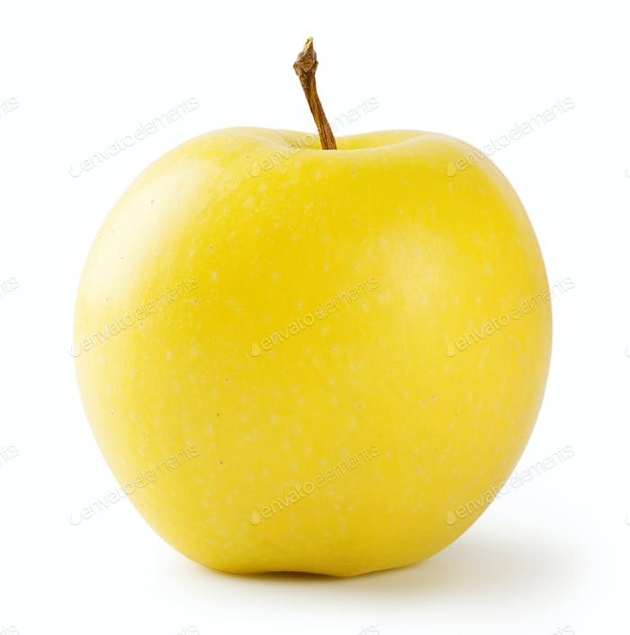 Ripe bright yellow apple