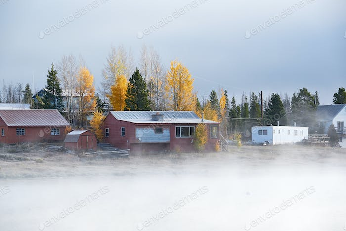Foggy misty autumn landscape in Colorado, USA
